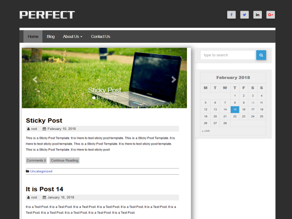Perfect WordPress theme